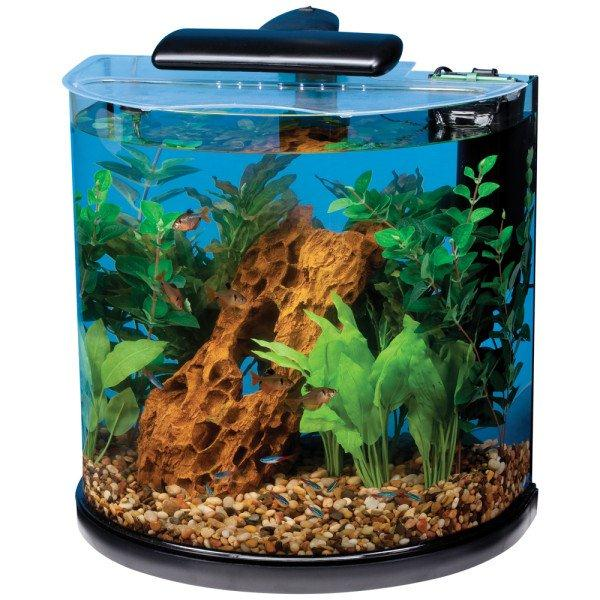 10 gallon fish tank and also 10 gallon saltwater tank and also 10 gallon aquarium hood and also cheap 10 gallon fish tank