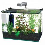 : 10 gallon fish tank and also best gallon aquarium and also 10 gallon starter tank and also 10 gallon acrylic fish tank