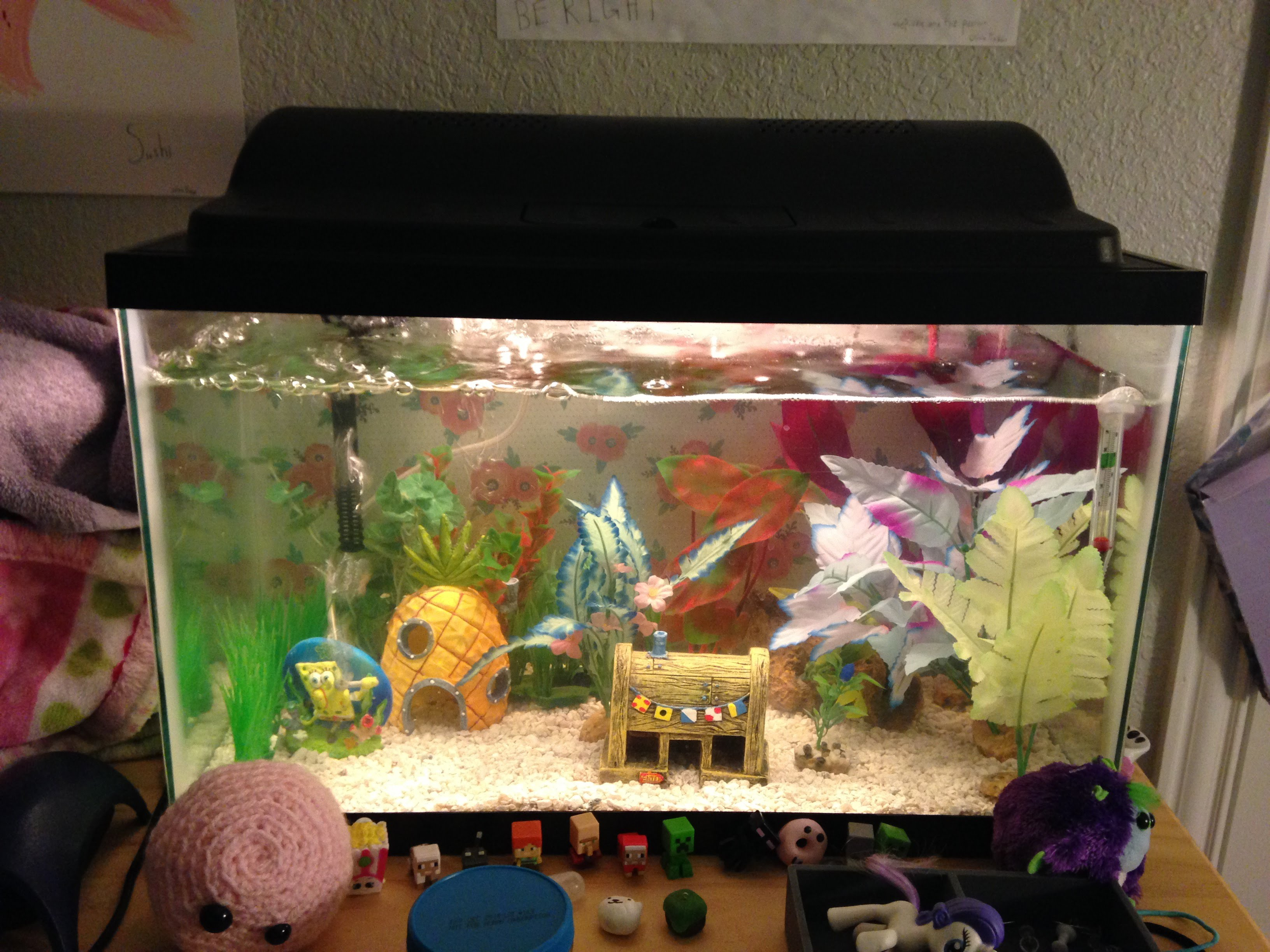 10 Gallon Fish Tank And Also Fish Tank Filter System And Also 10 Gallon Fish Aquarium Stand And Also Aquarium Hood For 10 Gallon Tank 10 Gallon Fish Tank Choices You