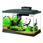 : 10 gallon fish tank and also glass fish tanks and also 10 gallon reef and also 10 gallon aquarium hood and light