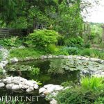 : Backyard ponds be equipped creating a pond be equipped back garden ponds be equipped cool backyard ponds