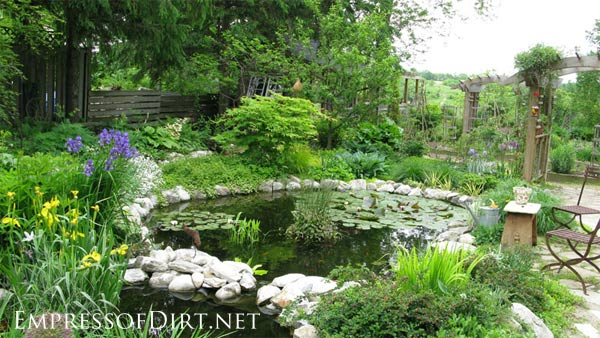 Backyard ponds be equipped creating a pond be equipped back garden ponds be equipped cool backyard ponds