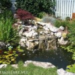 : Backyard ponds be equipped diy backyard pond be equipped building a garden fish pond be equipped stone fish pond