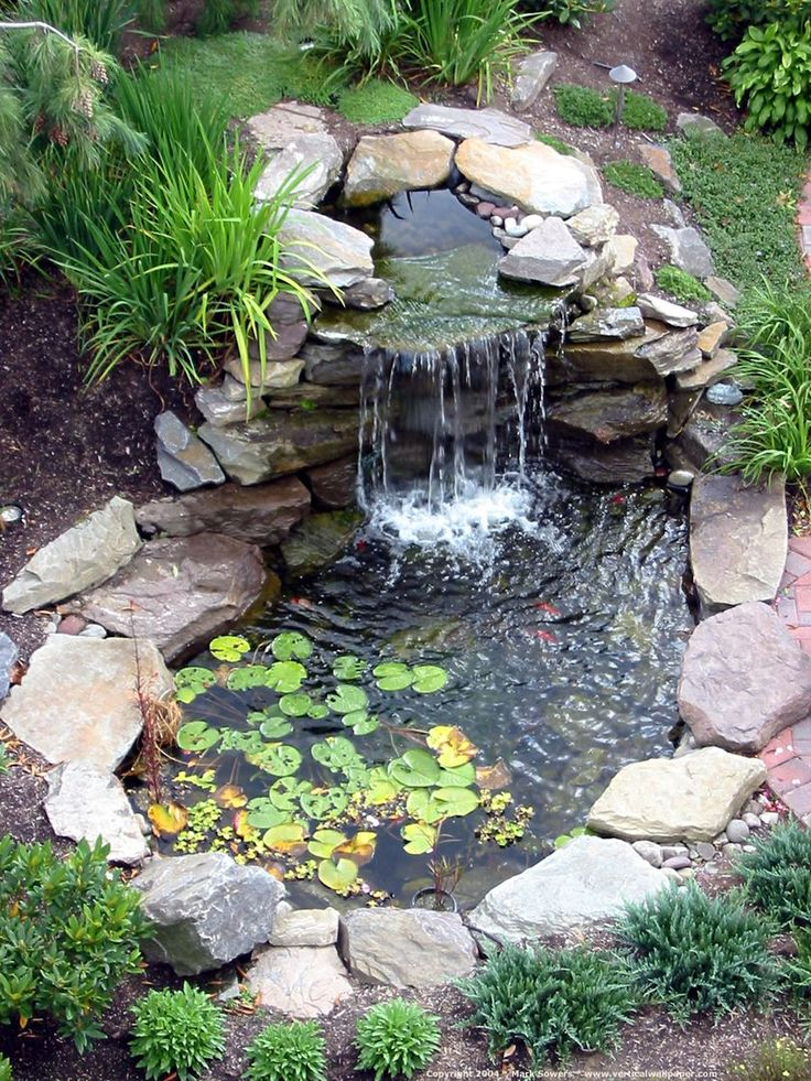 Backyard ponds be equipped pictures of backyard ponds be equipped how to build a koi pond with waterfall