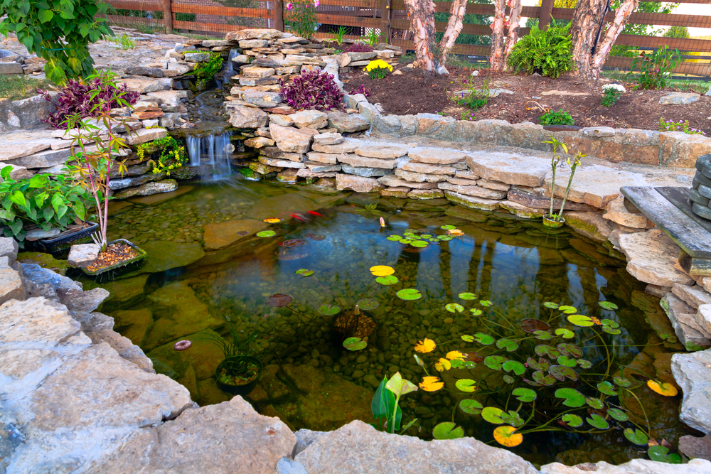 Backyard ponds be equipped simple pond designs be equipped backyard ponds and water features be equipped home fish pond design