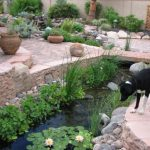 : Backyard ponds be equipped small fish ponds with waterfalls be equipped small backyard pond designs
