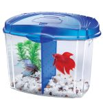 : Betta fish tanks and plus betta fish tank designs and plus water heater for betta fish tank and plus best home for betta fish