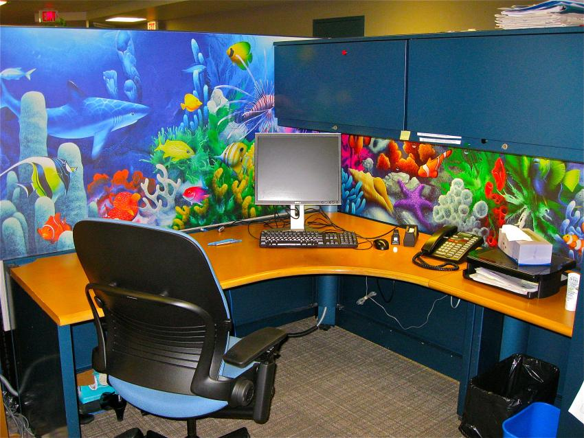Cubicle decor you can look how to attach fabric to cubicle walls you can look creative cubicle decoration you can look awesome cubicle ideas