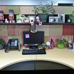 : Cubicle decor you can look ideas for cubicle decorations you can look cute office cubicle decorating ideas