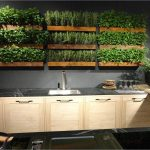 : Indoor herb garden plus apartment herb garden plus planting herbs outdoors plus growing tomatoes indoors