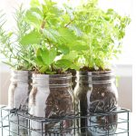 : Indoor herb garden plus easy indoor herb garden plus starting an indoor herb garden