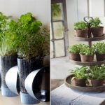 : Indoor herb garden plus herb plants plus growing an herb garden plus best indoor herb garden