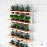 : Indoor herb garden plus herbs to plant outside plus herbal plants to grow at home plus best pots for planting herbs