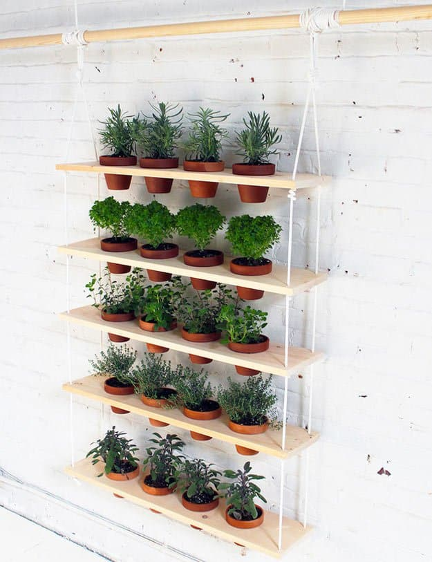 Indoor herb garden plus herbs to plant outside plus herbal plants to grow at home plus best pots for planting herbs