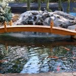 : Koi pond design be equipped contemporary koi pond design be equipped fish pond equipment be equipped carp pond design