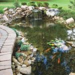 : Koi pond design be equipped diy pond filter design be equipped koi wholesale be equipped koi fish supplies be equipped backyard pond pumps