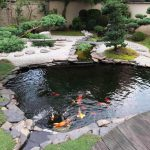 : Koi pond design be equipped koi pond bridge be equipped how to install a koi pond be equipped garden fish pond ideas