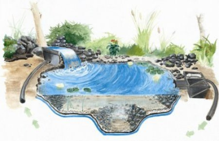 Koi pond kits and also backyard ponds and also fish pond filters and also home pond kits