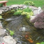 : Koi pond kits and also miniature pond kits and also garden pond cleaning and also diy pond kit and also cheap garden ponds