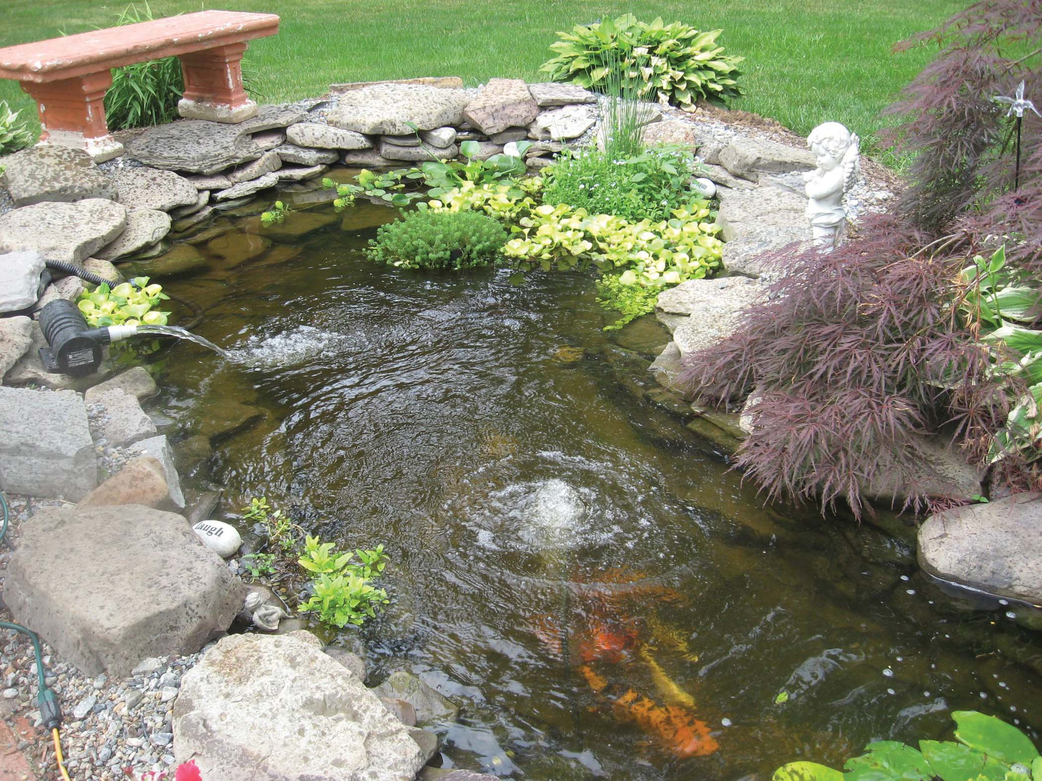 Koi pond kits and also miniature pond kits and also garden pond cleaning and also diy pond kit and also cheap garden ponds
