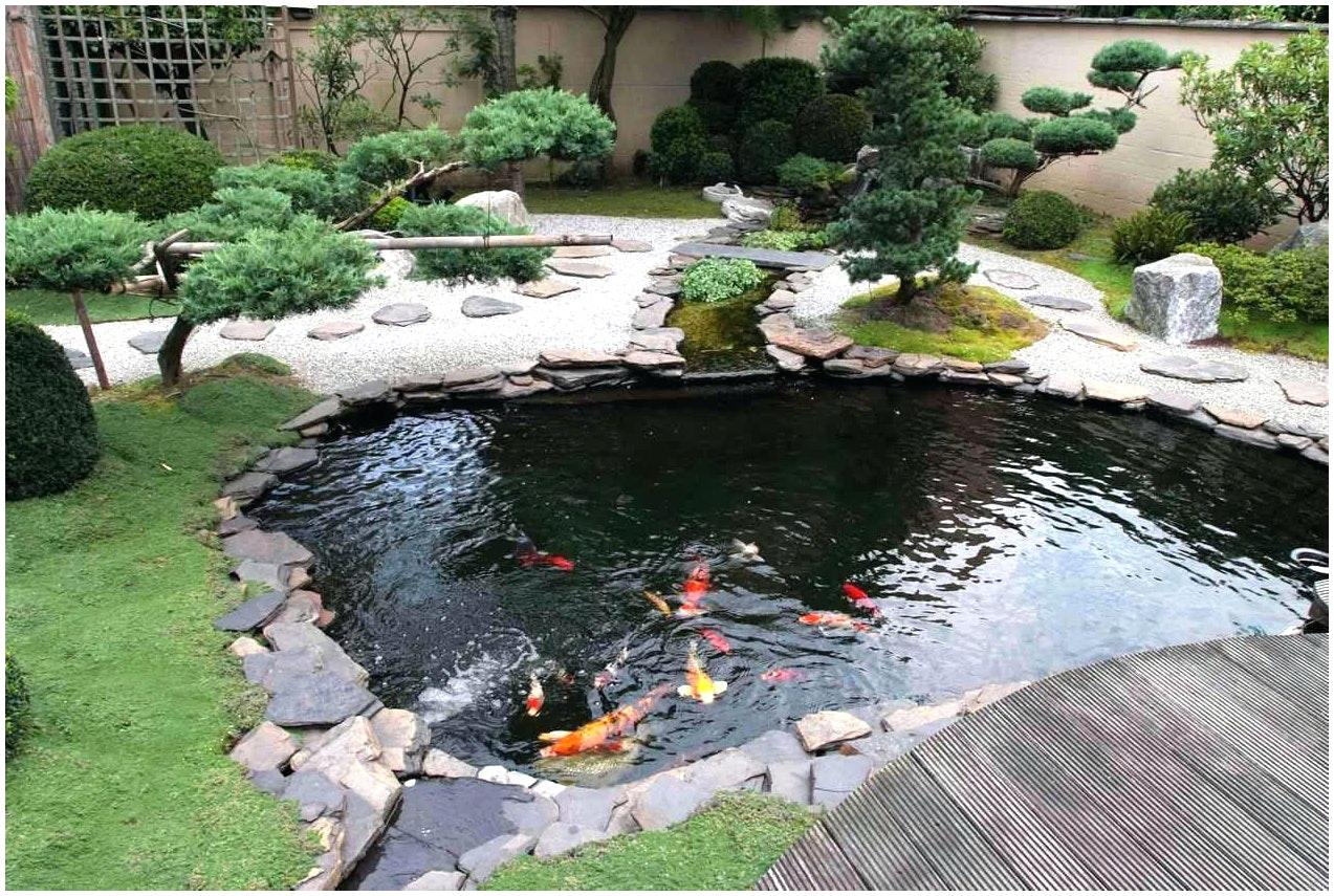 Koi pond kits and also preformed pond kits and also koi fish pond kits and also coy pond kit