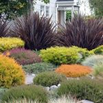 : Landscape grasses plus outdoor tall grass plants plus small ornamental grasses for landscaping