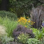 : Landscape grasses you can look decorative grasses you can look fountain grass you can look pampas grass
