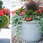 : Large outdoor planters you can look garden plant pots for sale you can look outdoor potted trees you can look exterior planters large