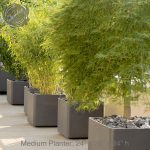 : Large outdoor planters you can look giant plant pots you can look herbal plants you can look contemporary planters