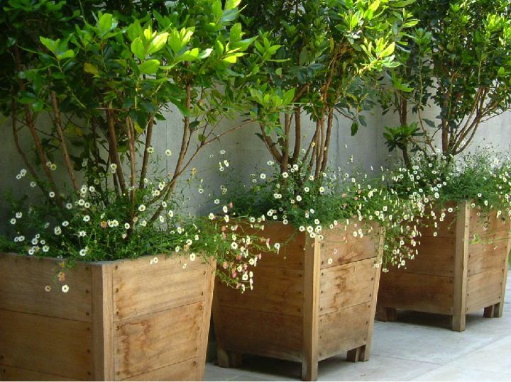Large outdoor planters you can look oversized garden planters you can look planters for flowers you can look huge flower pots for outside