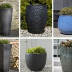 : Large outdoor planters you can look window boxes you can look planter boxes you can look ceramic planters you can look indoor plants