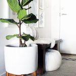 : Plant stands indoor plus cheap plant stands plus small plant stand plus indoor plant stands for multiple plants