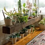 : Plant stands indoor plus decorative plant shelves plus plant stand ideas inside plus indoor plant stand furniture