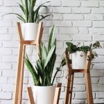 : Plant stands indoor plus garden rack for plants plus short wooden plant stand plus wooden tiered plant stand
