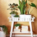 : Plant stands indoor plus small plant holders plus indoor plant holder stand plus garden plant display stands