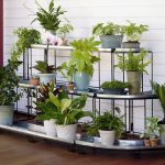 : Plant stands indoor plus wooden plant stands indoor plus decorative plant stands plus plant holder stand