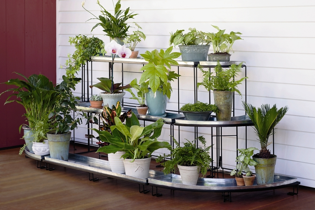 The Unique Look of Plant Stands Indoor with Simple Racks