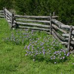 : Split rail fence plus types of wood fences plus cedar wood fence panels plus fence installation