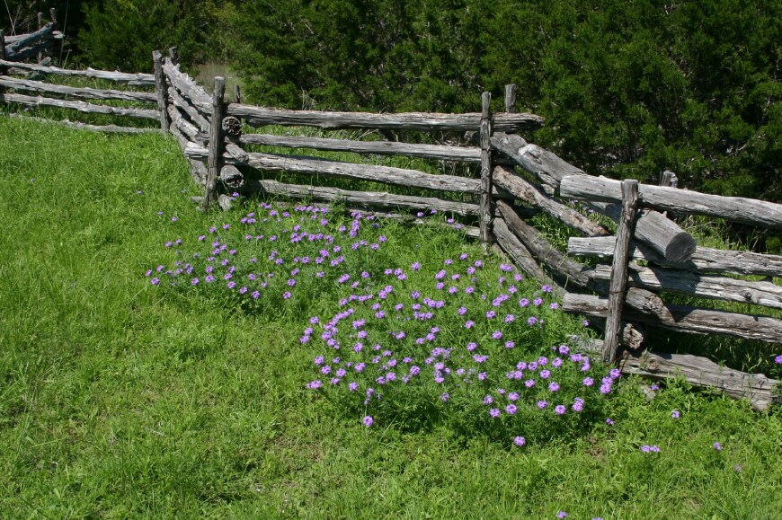 Split rail fence plus types of wood fences plus cedar wood fence panels plus fence installation