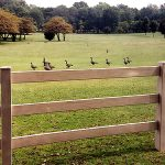 : Split rail fence plus wood post rail fence plus timber fence rails plus post and rail fence construction