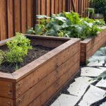 : Wooden planter boxes you can look wooden garden boxes you can look large plant containers you can look vegetable planter box