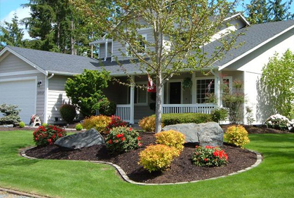 Front Yard Landscaping on Budget: Perennial and Ornamental Grass