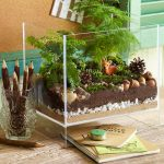 : Terrarium plants be equipped plants in glass bowl be equipped tiny terrarium plants be equipped small glass terrarium